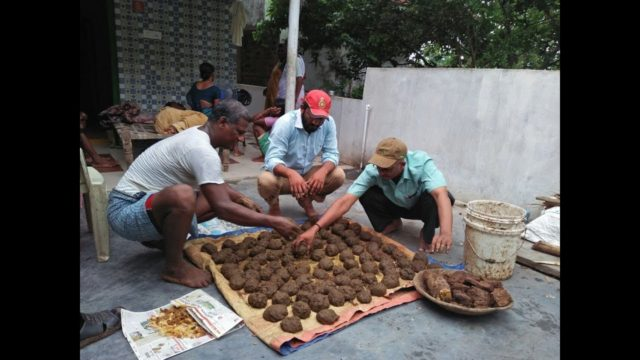 Jeevamrutham, Ghana jeevamrutham, how to prepare jeevamrutham, benefits of jeevamrutham, natural farming,